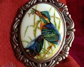 SALE-- KING FISHER Victorian Cameo Brooch Pin - 1960s Vintage European Beautiful Blue Kingfisher Bird