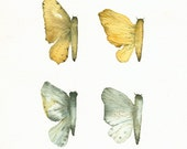 Butterfly Wings- Gold, teal, grey- archival print of original watercolor - amberalexander