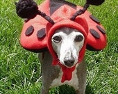 Handmade Original Ladybug small dog Halloween costume-SMALL dog 20 pounds - hatz4brats