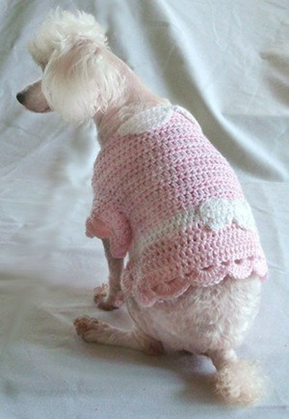 Crochet Patterns Dog Sweater