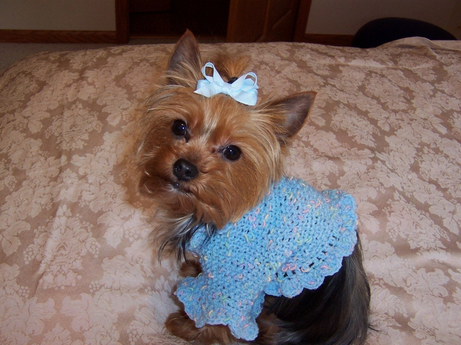 Loom Knitting Scarf Patterns Free : Knitted Sweaters For Small Dogs Free Patterns