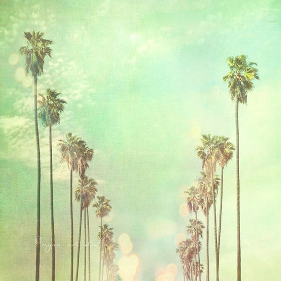 la la land. Los Angeles photography California palm trees sunny day summer vacation blue mint green fine art print 5x5