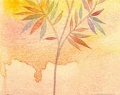 Serenity - original watercolor - molMolly