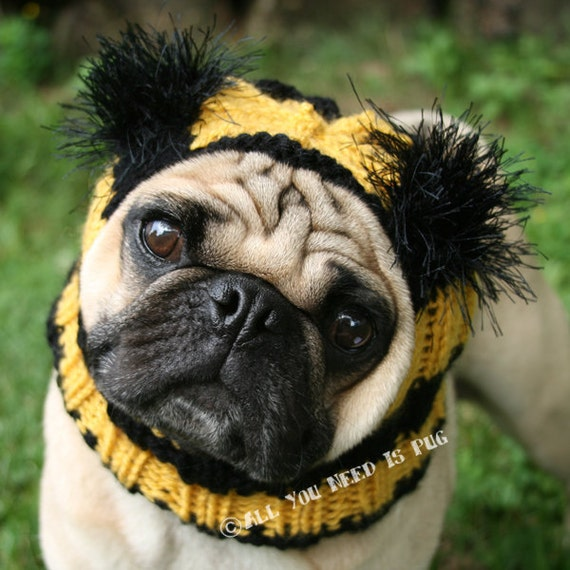 Dog Hat -  Bumble Bee Hat - The Original Pug Hat