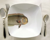 "fishy fish square bowl  - ""mr. machoire"" - MilestoneDecalArt"