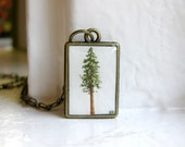 Redwood Pine Tree Necklace - Hand Painted Pendant Necklace, Original Painting - Christmas Tree - HeatherKent