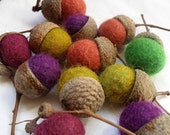 One dozen wool felt acorns - table decoration,good luck charm... - feltlovely