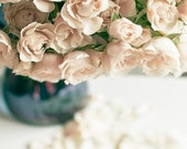 Flower photography, Mothers day decor, pale roses, cottage chic home decor, romantic, beige and blue, 8x10