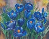 Blue Crocus Paper Giclee Print Flower Floral by Carol Thompson - carolthompsonart