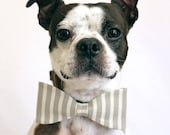 Grey and White Striped Dog Bow-tie - Bridal accessories for Dogs - LittleBlueFeathers