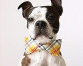 Yellow Plaid Dog Bow-tie - Handmade Dog Accessories - Regular and Large Sizes - LittleBlueFeathers