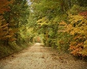 Sunday Drive - 11x14 Fine Art Photograph - Country Road in Autumn - Fall Foliage Escapade - sintwister