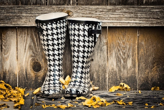 Photo of Black and White Rubber Boots on Autumn Day - Fine Art Photo Entitled Autumn's Boots - 8 X 12
