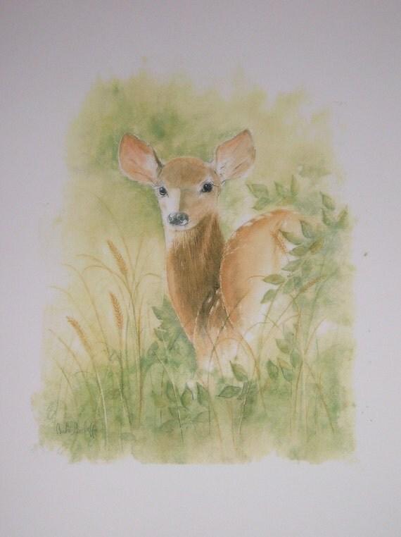 Little Deer in Woods Watercolor Print by Carla Garloff