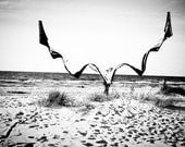 Romantic, dreamy black and white beach fine art photography - 5x7 print - Lilienthal's Dream - MyMonography