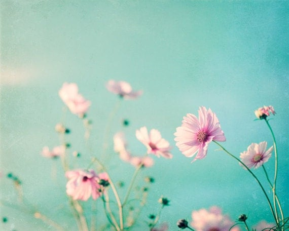 11x14 Print - flower blue photography pink aqua - floral spring wall art photos pastel decor - pale fine art photograph white teal