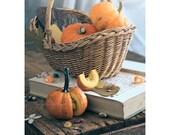 Pumpkin Season - fine art photo print autumn fall orange vegetable harvest interior decor Helloween food still life - GoldenSection