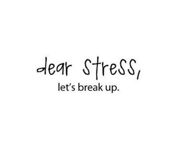 dear stress lets break up - you choose the color- VINYL LETTERING DECAL