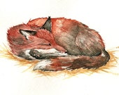 Sleeping Red Fox  Original Watercolor 6''x9'' wildlife nature art nap nursery art baby shower whimsical winter christmas new year's eve - Goosi