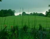 Summer Rain at Seatrail Metallic Photo 5 x 7 - Lehns