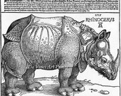 Fine Art Reproduction. The Rhinoceros, 1515 by Albrecht Durer. Fine Art Print. - DaVinciArtPrints