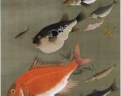 Japanese Art. Fine Art Reproduction. Fish, c.1760 by Ito Jakuchu. Fine Art Print - DaVinciArtPrints