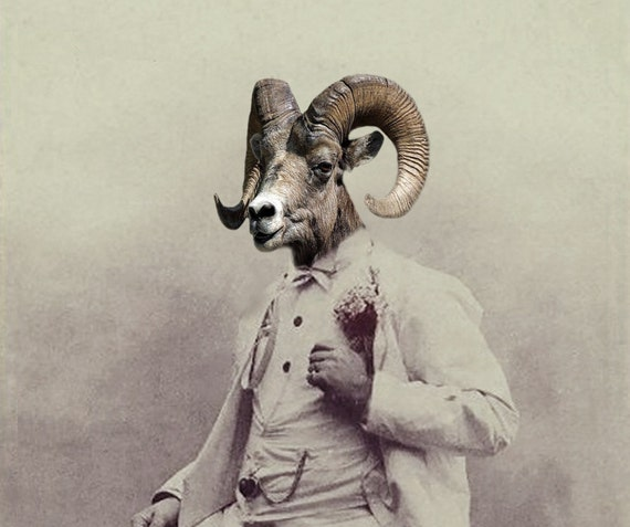 Ramsey - Vintage Ram 5x7 Print - Anthropomorphic - Altered Photo - Whimsical Art - Photo Collage - Funny Animal - Unusual Gift Idea