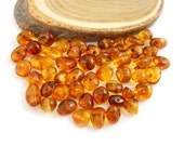 Natural Baltic Amber polished rounded  beads - 50 pcs - Cognac