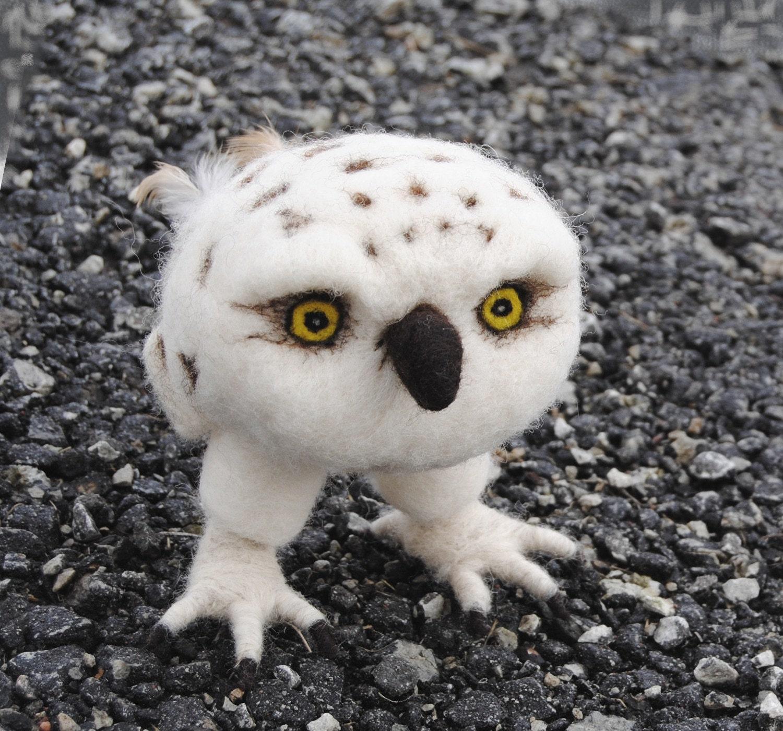 Cute baby white owl - photo#25