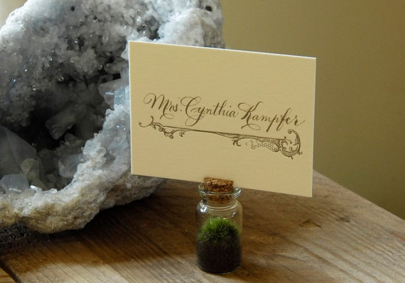 Place Card Holder, Wedding Favor or Party Favor - Mini Moss Terrarium
