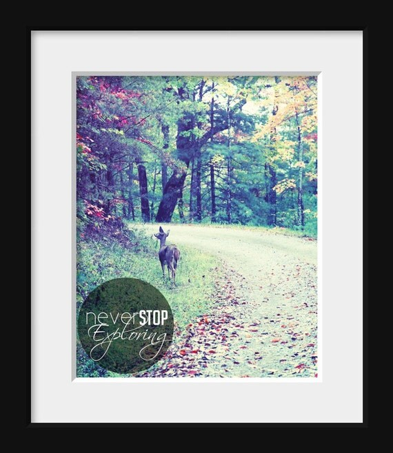 Inspirational Art Print 8x10 FA Photography -  Never Stop Exploring, original photography by Jennifer Jackson