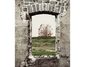 Fall Tree Photo Grey Orange Green Surreal Fort Wall 5x7 Fine Art Photograph - LostInTheValleyPhoto