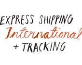Express International shipping with tracking