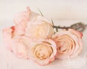Flora Bella- Shabby Chic Wall Art- Pink Rose Bouquet- Floral Photography-Pastel Colors- Romantic- 8x10 Fine Art Print - kellynphotography