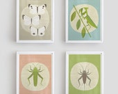 4 Insects posters for the room of the young entomologist - printable poster -  Digital Image Download - MandarinaPrint
