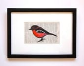 Framed Red Robin LInoprint - Handcoloured - Australian Native Bird - trees4thewood