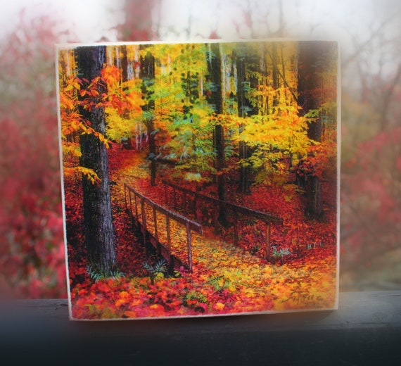 Autumn footbridge, 4x4 wood cradled birch panel, nature photograph, autumn art, tree art, gift under 25