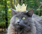 Royal Cat Crown - Halloween Cat Crown - ToScarboroughFair