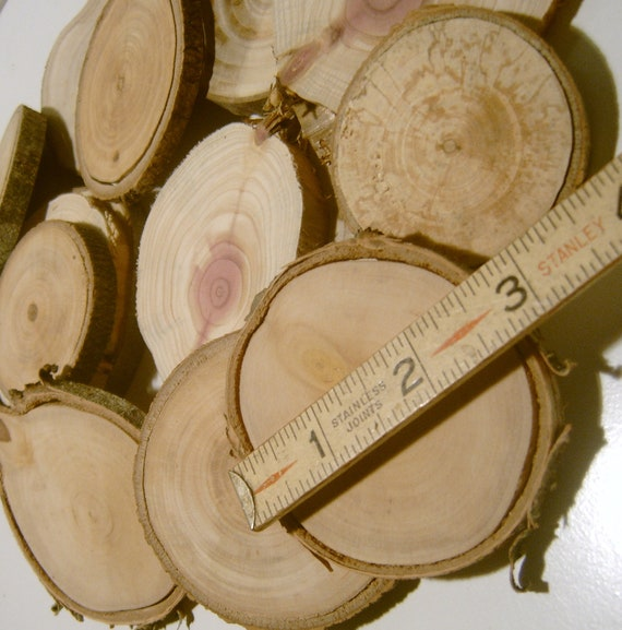 240 Tree Branch Slices Assorted Wholesale Lot