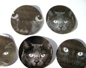 Black Cat Stickers or Envelope Seals Set of 20 - SiriusFun
