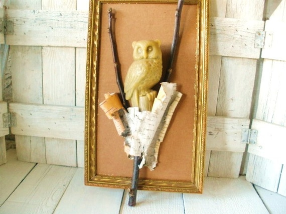 Vintage owl nature assemblage framed wall hanging