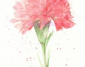 Fine art watercolor painting, flower art, red CARNATION WATERCOLOR PRINT, giclee print, flower interest 8x10