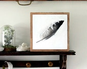 Feather Art Original Drawing Ink Painting