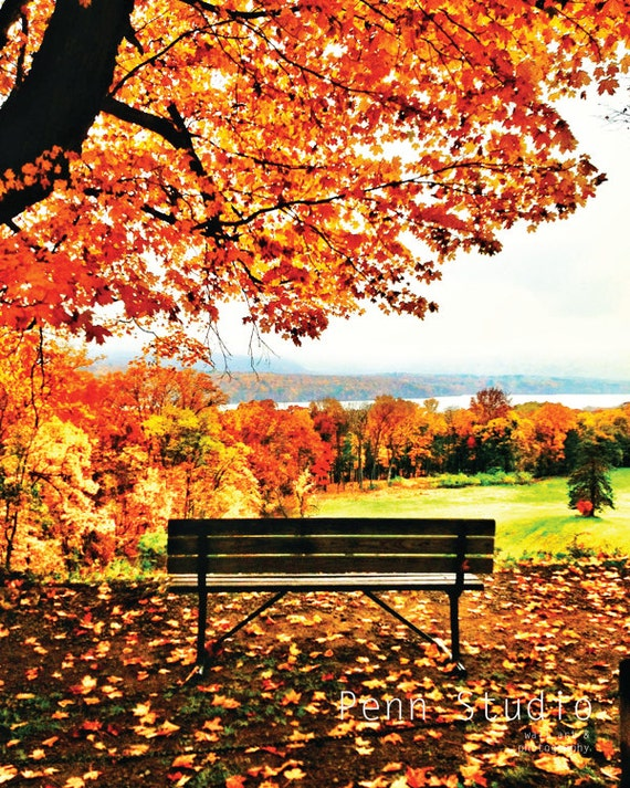 Wall Art / Photography / Autumn Print / Autumn Art / Fall Photograph / Bench Photo - Bench With A View