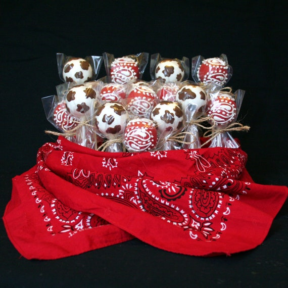 12 Cowboy or Cowgirl Cake Pops - for Country, Wild West, Rodeo, Farm, Barnyard, favors, party