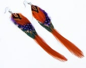 Long pheasant feather dangle earrings in brown, violet, orange and black on surgical steel hooks