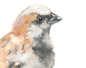 "Sparrow Painting -  archival print of my original watercolor painting - 4"" X 4"""