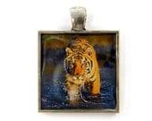 Tiger Pendant - Big Cat Feline Jungle Animal Orange Black Stripe Nature Jewelry - CharleneSevier