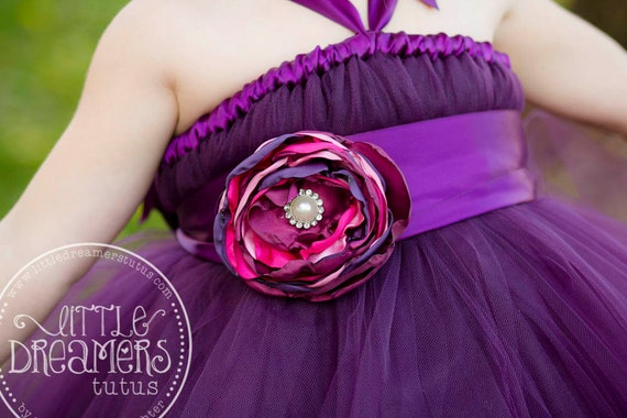 Plum Tutu Dress w/ Flower Sash