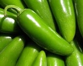 Jalamundo Jalapeno Heirloom Huge Hot Pepper Seeds - TheSummerKitchen